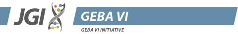GEBA VI logo