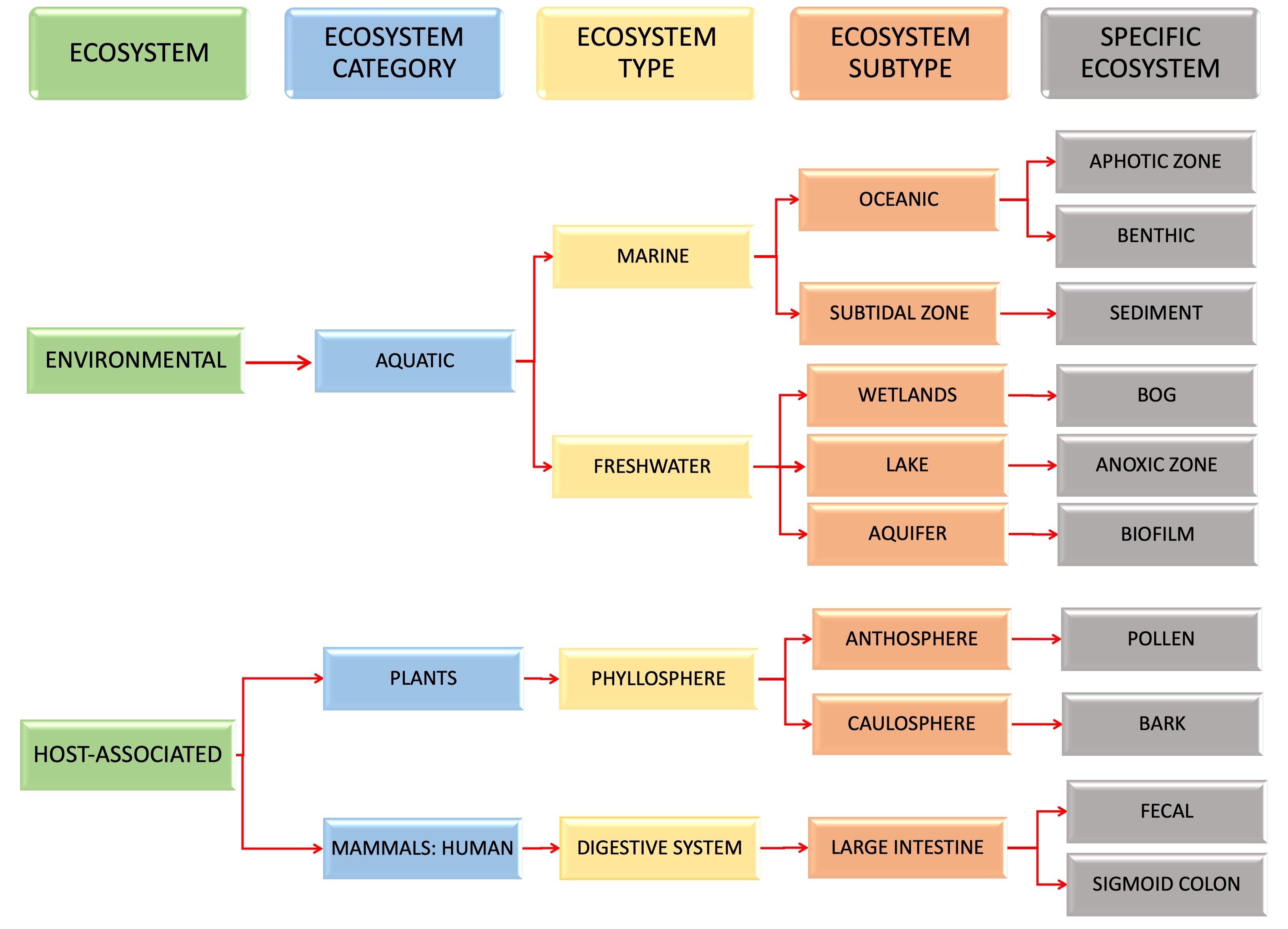 sample2 eco path